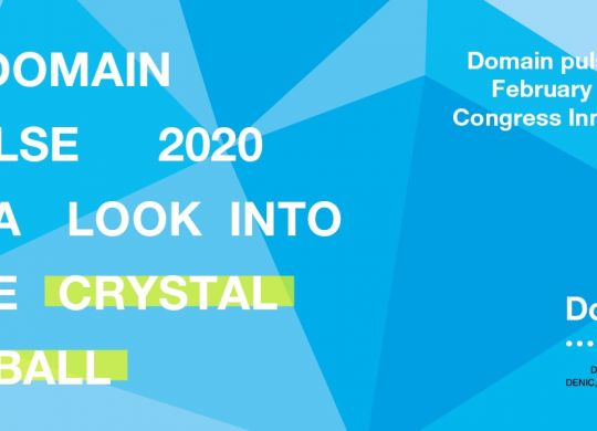 Domainpulse2020